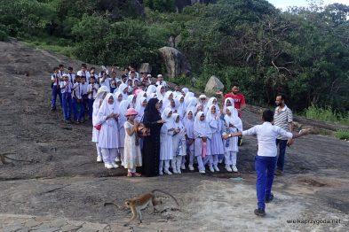 Dumballa - szkolna wycieczka w świątyni