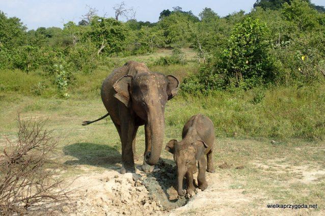 Mama z synkiem jednorocznym