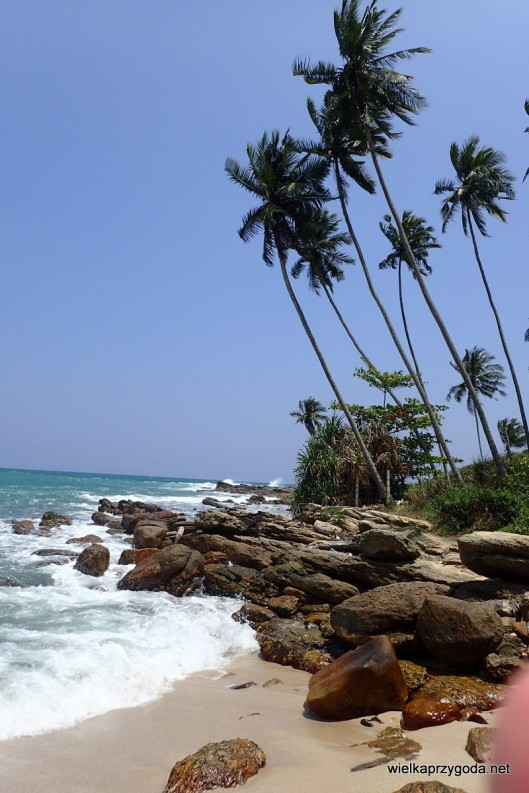 Srilanka plaża Goyambokka