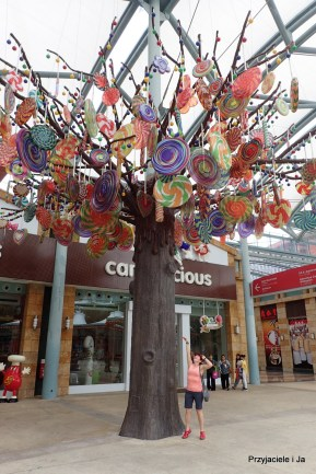 Lizakowe drzewo
